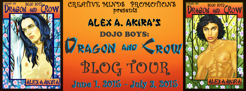 D-&-C-BLOG-TOUR-BANNER-TEST