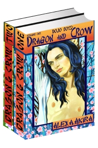 DRAGON-&-CROW--2-VOLUME-400X600-BOOK-COVER-T