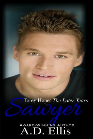 SawyereBook1